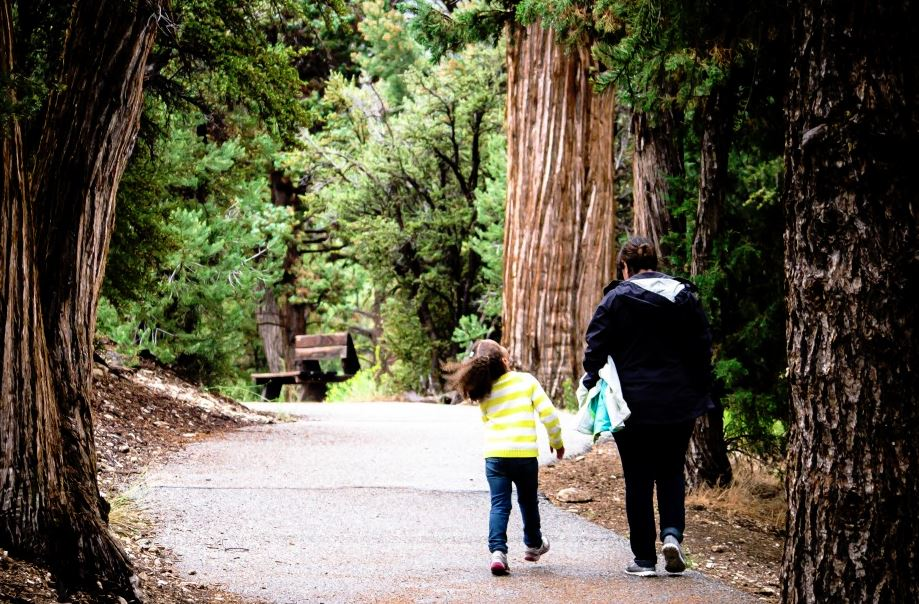 About Us - a mother and daughter walking among the redwoods.